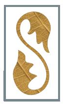 bot_stec_logo
